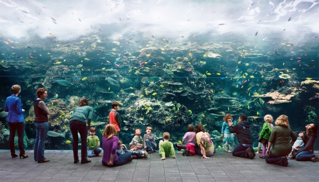 Thomas Struth (born 1954) 'Aquarium, Atlanta, Georgia' 2013