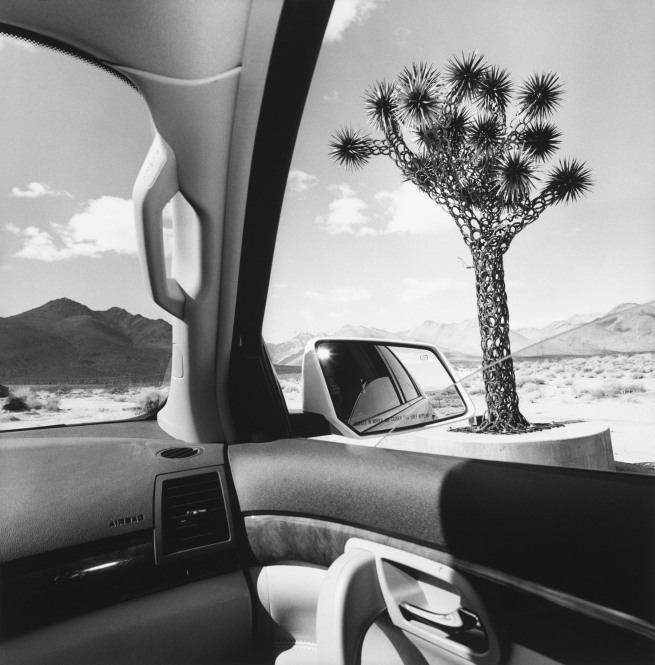 Lee Friedlander. 'California' 2008
