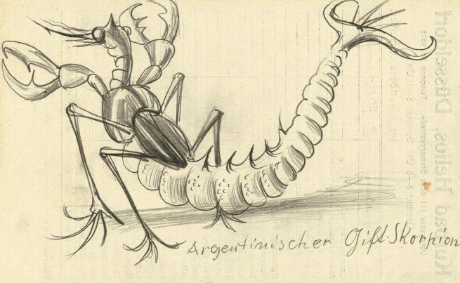 Otto Dix (1891-1969) 'Argentinian Venomous Scorpion' 1922