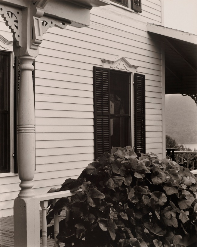 Alfred Stieglitz (American, 1864-1946) 'House and Grape Leaves' 1934