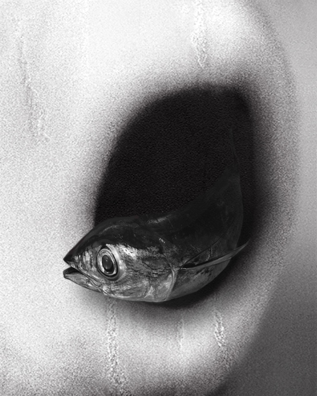 Pat Brassington. 'Vedette' 2015
