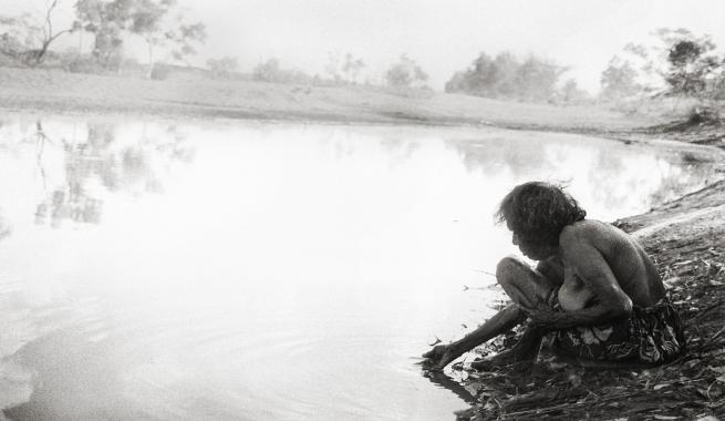 Judith Crispin. 'Lily Nungarrayi Yirringali' 2014