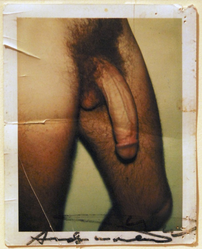 Andy Warhol (United States, 1928-1987) 'Untitled (Victor Hugo's Penis)' Date unknown