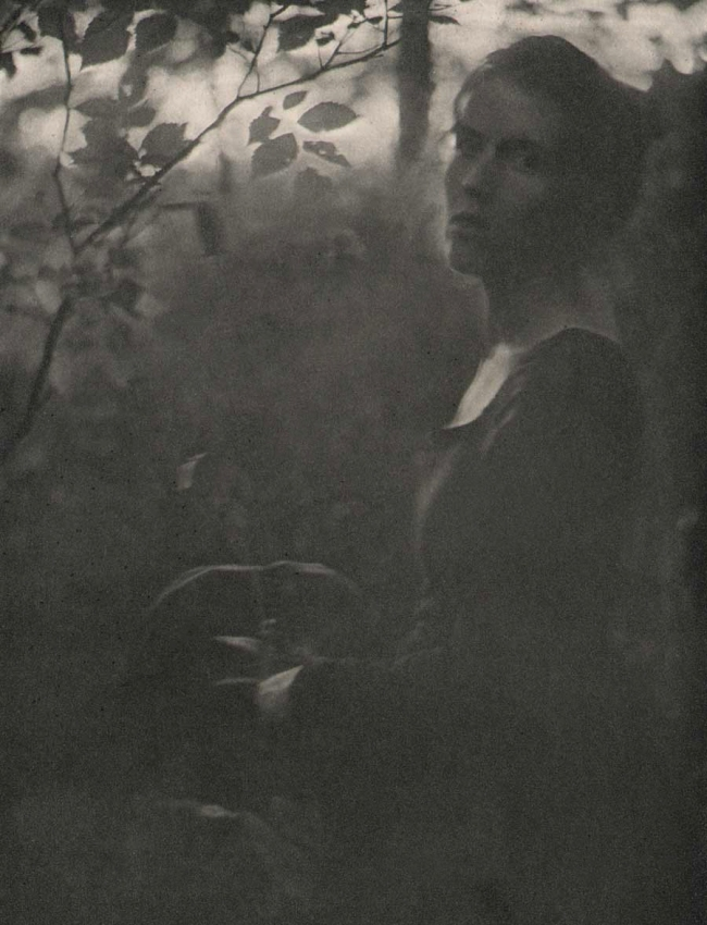"Clarence H. White (1871-1925) ""At the Edge of the Woods - Evening"" 1901"