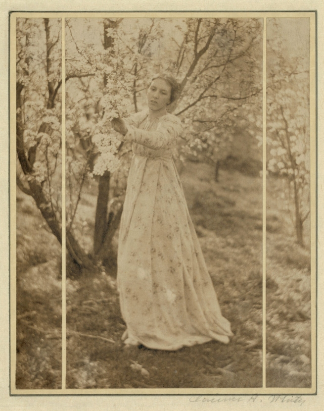 Clarence H. White (American, 1871-1925) 'Spring - A Triptych [Letitia Felix]' 1898