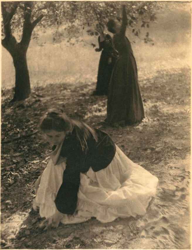Clarence H. White (American, 1871-1925) 'The Orchard' 1902