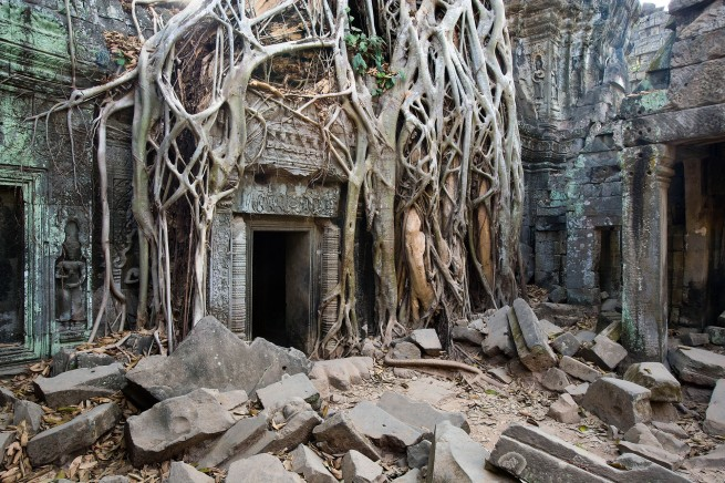 John Gollings. 'Ta Prohm Temple, Angkor Thom, Cambodia' 2007