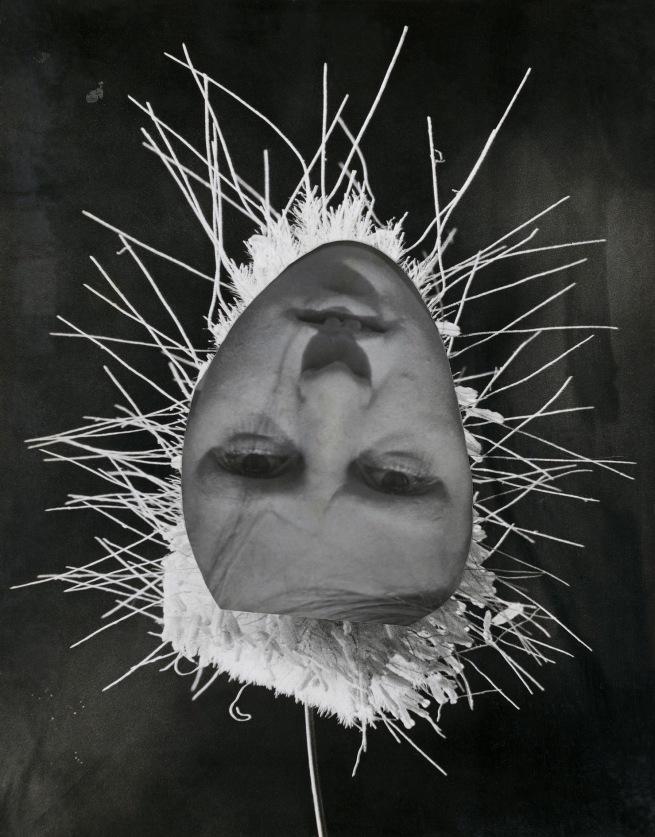 Raoul Hausmann (1886-1971) 'Petite Fleur en Herbe [Small flower in grass]' 1932