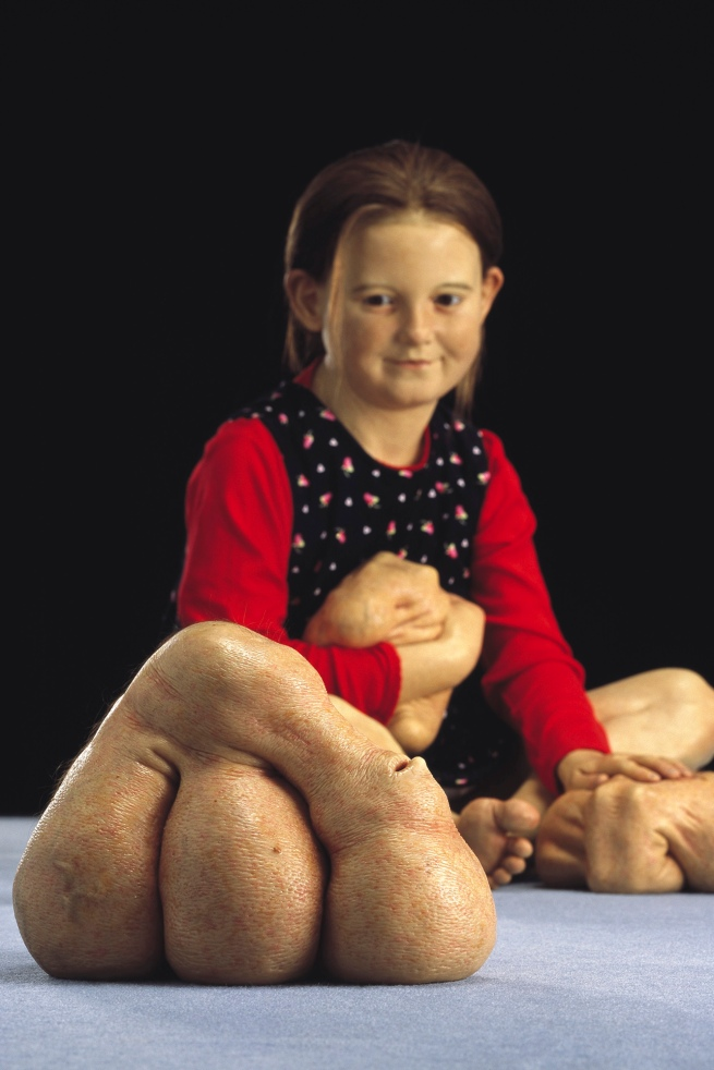 Patricia Piccinini. 'Still Life with Stem Cells' 2002