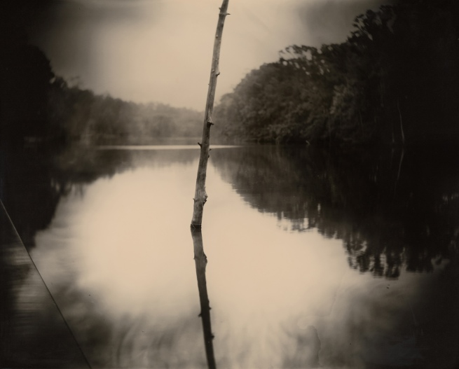 Sally Mann (b. 1951) 'Deep South, Untitled (Stick)' 1998
