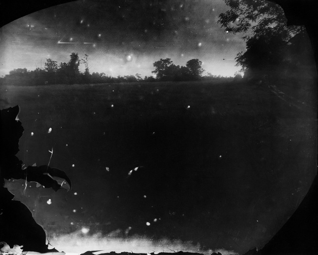Sally Mann (b. 1951) 'Battlefields, Antietam (Starry Night)' 2001