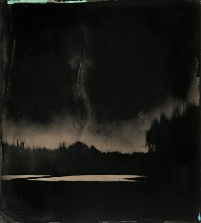 Sally Mann (American, b. 1951) 'Blackwater 9' 2008-2012
