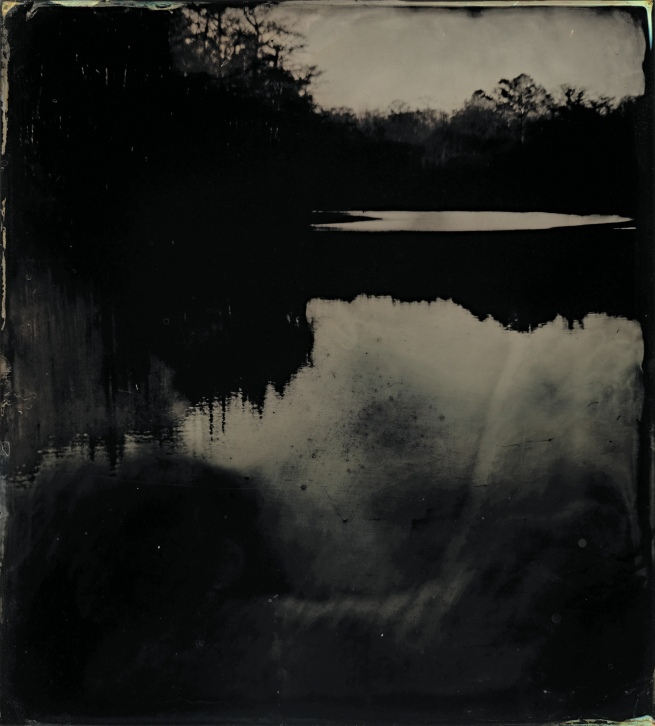 Sally Mann (American, b. 1951) 'Blackwater 17' 2008-2012