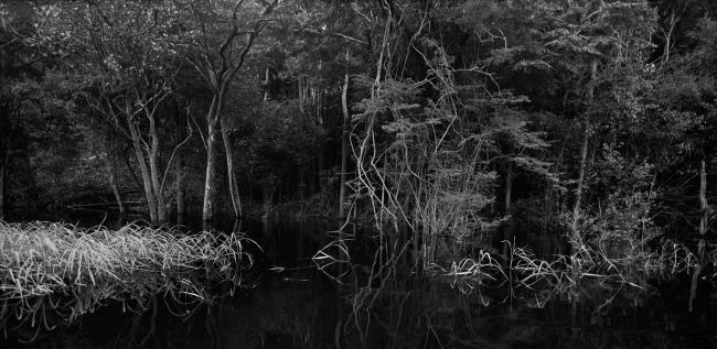 Balthasar Burkhard (1944-2010) 'Rio Negro' 2002