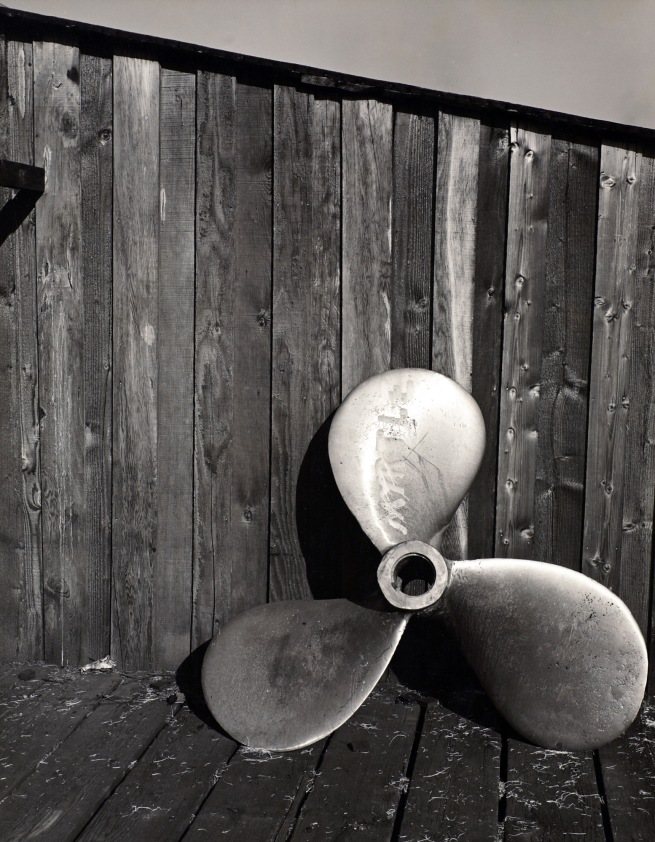 Minor White (American, 1908-1976) 'Untitled (Propeller)' c. 1939