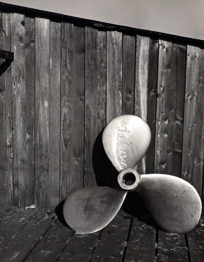 Minor White(American, 1908-1976) 'Untitled (Propeller)' c. 1939