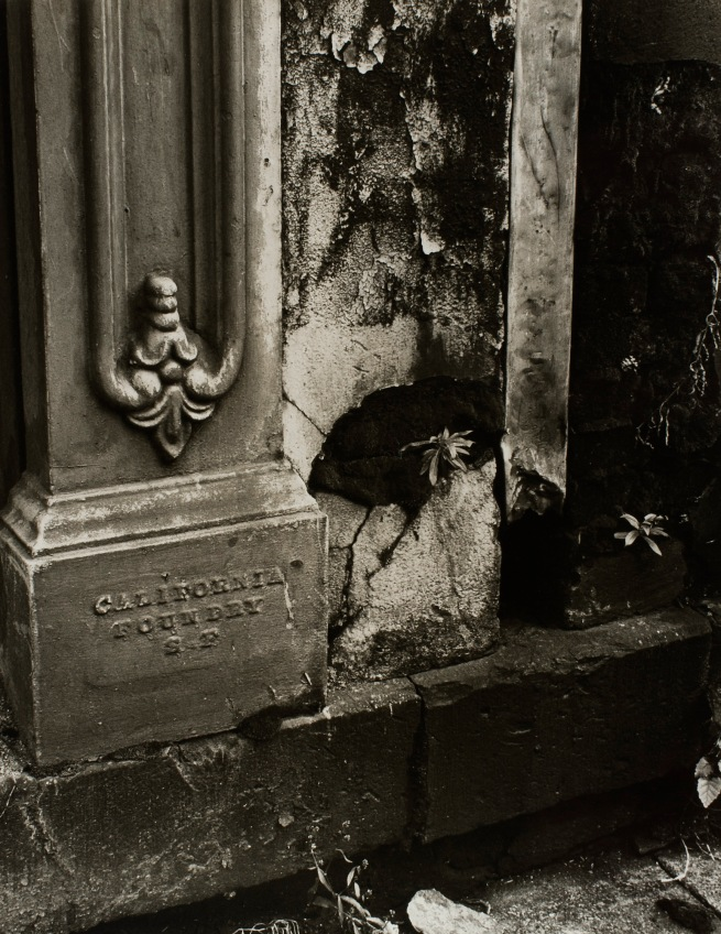Minor White(American, 1908-1976) 'Detail (California Foundry)' c. 1939