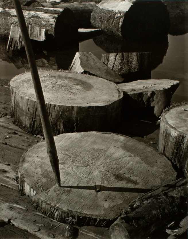 Minor White(American, 1908-1976) 'Lily Pads and Pike' c. 1939