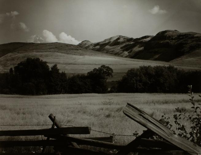 Minor White(American, 1908-1976) 'Catherine Creek' c. 1941