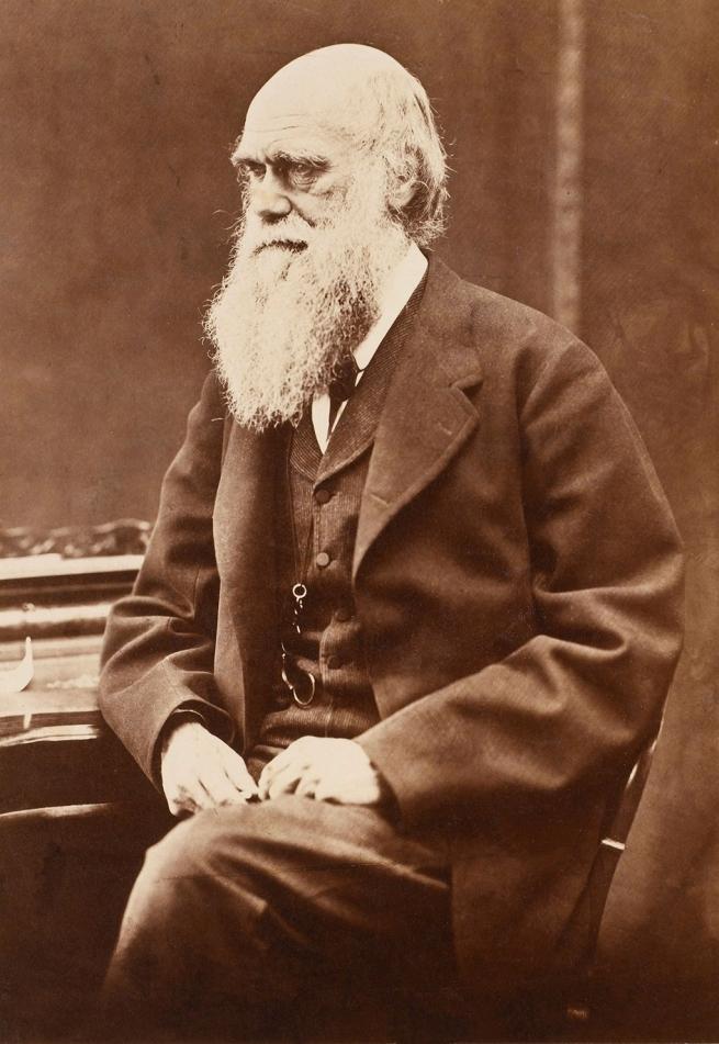 Oscar Rejlander (1813-75) 'Charles Darwin' 1871