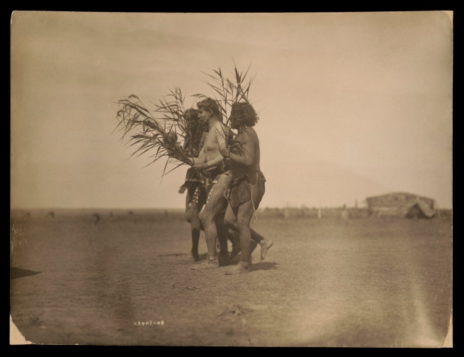 Edward S. Curtis (1868-1952) 'Arikara Medicine Ceremony - The Ducks' c. 1908