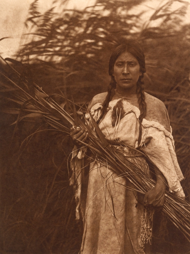 Edward S. Curtis (1868-1952) 'The rush gatherer' c. 1908