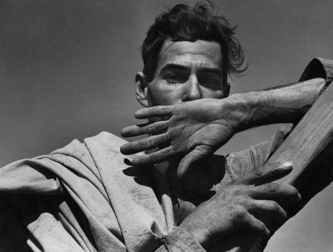 Dorothea Lange. 'Migratory Cotton Picker, Eloy, Arizona' 1940