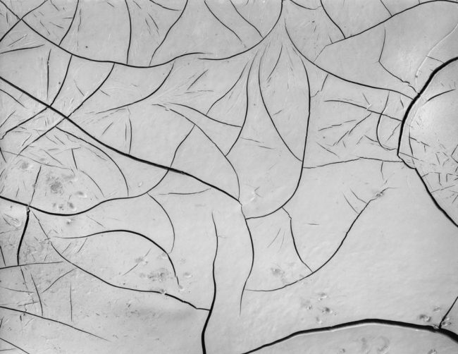 Brett Weston. 'Mud Cracks' 1955