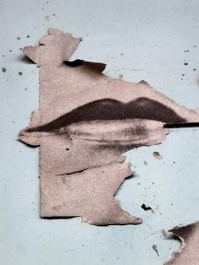 Petra Senn. 'Her Lips' 2015