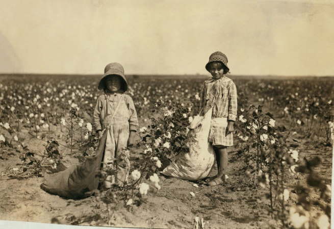 Lewis Hine. 'Jewel and Harold Walker, 6 and 5 years old, pick 20 to 25 pounds of cotton a day' 1916