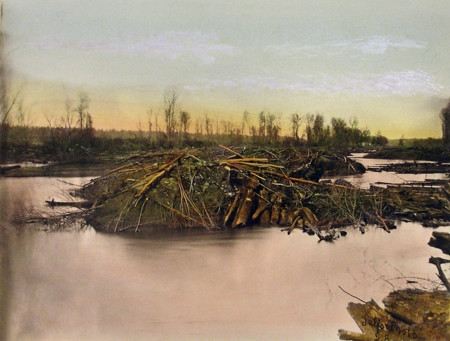 Robert B. Talfor Plate XXVIII of the photographic album 'Photographic Views of Red River Raft' 1873