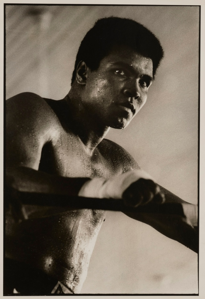 Sonia Katchian(American, born Lebanon, 1947) 'Muhammed Ali' 1974