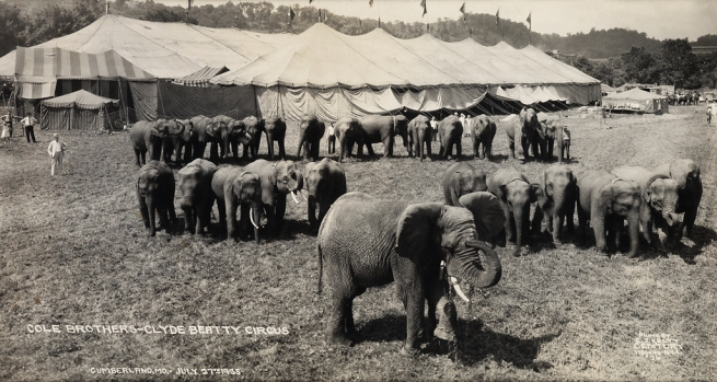 Edward Kelty (1888-1967) 'Cole Brothers - Clyde Beatty Circus' Cumberland, MD July 27th 1935