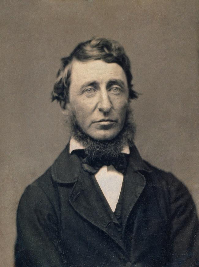Benjamin D. Maxham (American, ) 'Henry David Thoreau' 1856 (detail)