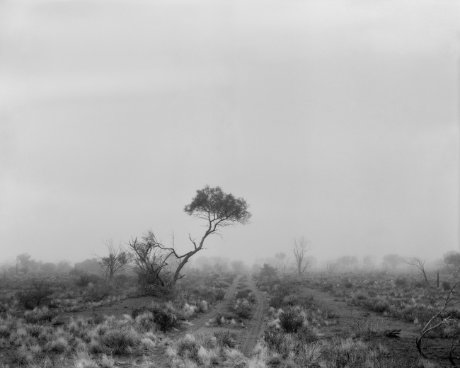 Paul Ogier. 'One Tree (former emu field atom test site)' 2010