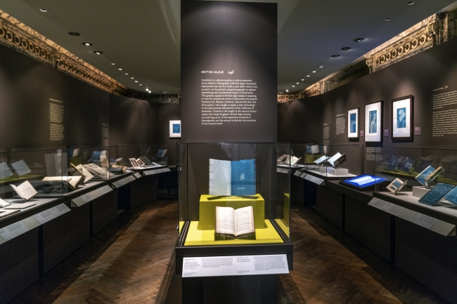 Installation view of the exhibition 'Blue Prints: The Pioneering Photographs of Anna Atkins' at The New York Public Library