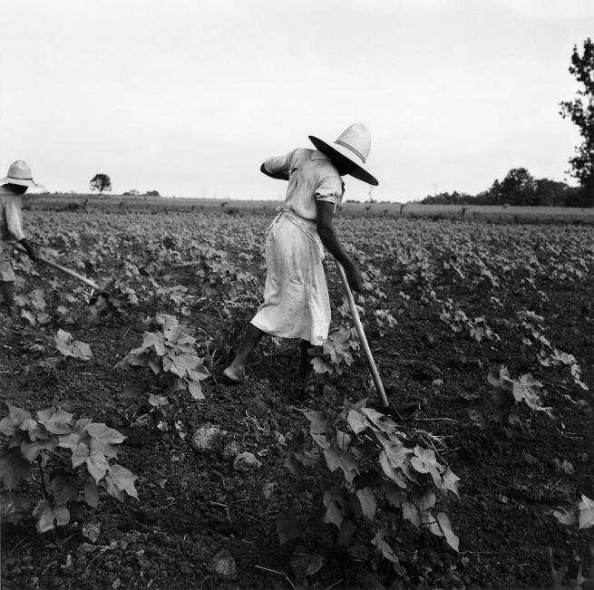 Dorothea Lange (1895-1966) 'Near Eutah, Alabama' 1936