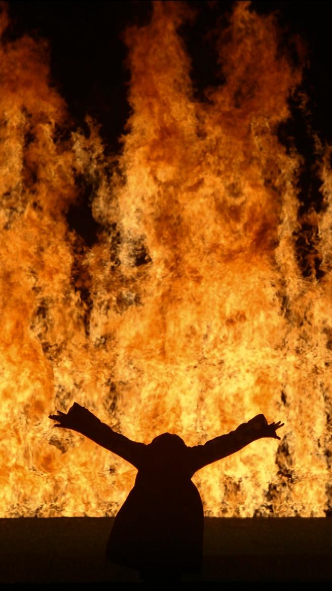 Bill Viola. 'Fire Woman' 2005