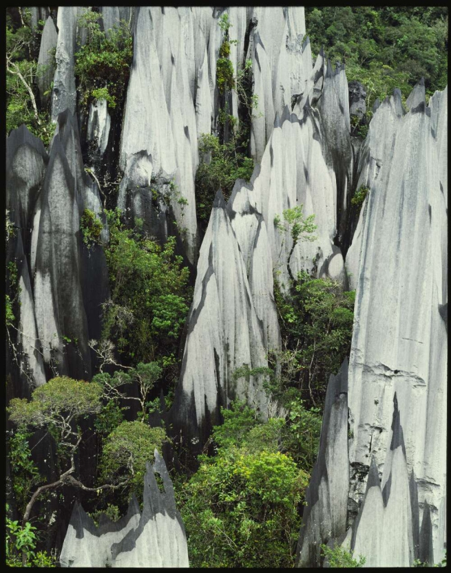 Peter Dombrovskis (Australian, born Germany 1945-96) 'Limestone pinnacles on Mount Api, Sarawak, Borneo' 1985