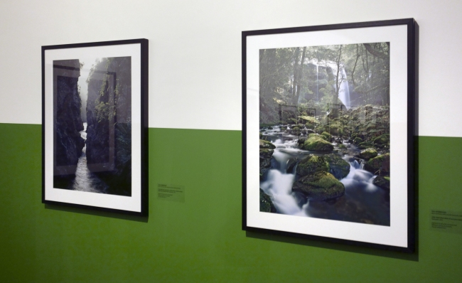 Installation view of the exhibition 'Dombrovskis: journeys into the wild' at Monash Gallery of Art, Wheelers Hill
