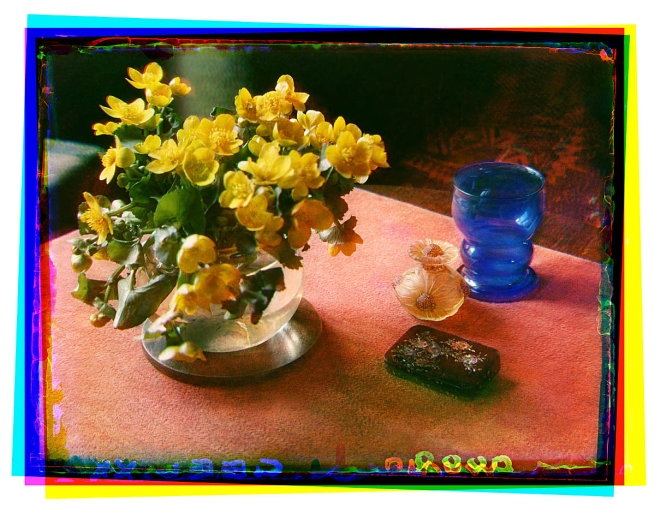 Bernard F. Eilers (1878-1951) 'Stilleven met dotterbloemen in een glazen vaas en enkele glazen voorwerpen' (Still life with dotter flowers in a glass vase and some glass objects) 1934-04/1939-09