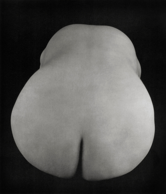 "Edward Weston. 'Anita (""Pear-Shaped Nude"")' 1925"