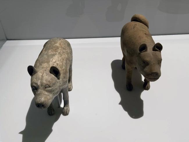 Wild male dog 陶狼犬(公) Western Han dynasty, 207 BCE - 9 CE; Domestic female dog 陶家犬(母) Western Han dynasty, 207 BCE - 9 CE