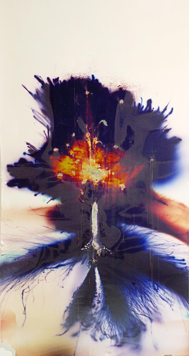 Daniel T. Braun (German, b. 1975) 'Rafael Shafir' 2006