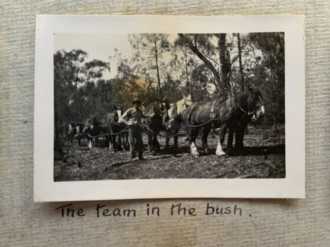 """The team in the bush,"" Breeza, September 1923 in John ""Jack"" Riverstone Faviell 1922-1933 photo album"