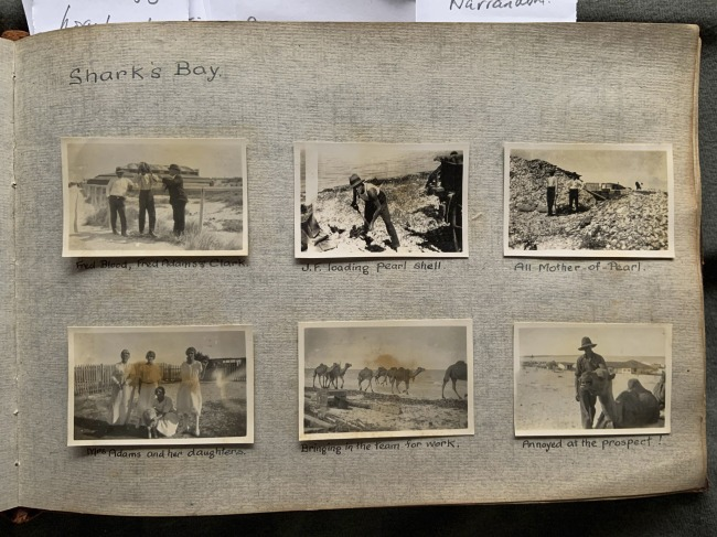 """Shark's Bay,"" 1923 in John ""Jack"" Riverstone Faviell 1922-1933 photo album"