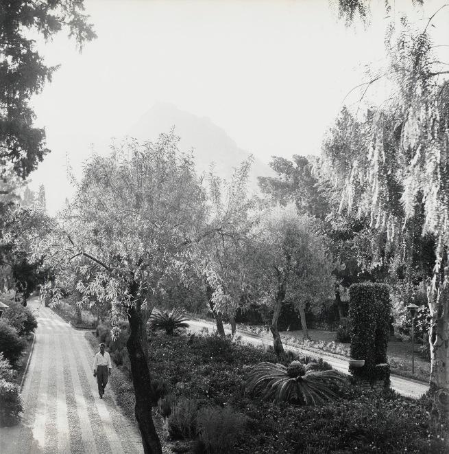 Peter Hujar (American, 1934-1987) 'Public Garden, Taormina, Sicily' 1959