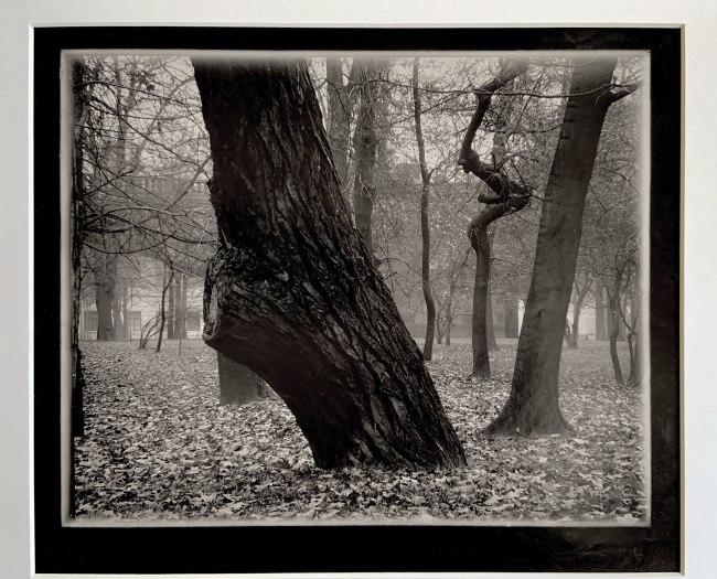Josef Sudek (Czech, 1896-1976) 'Střelecky Ostrov' 1950s-60s
