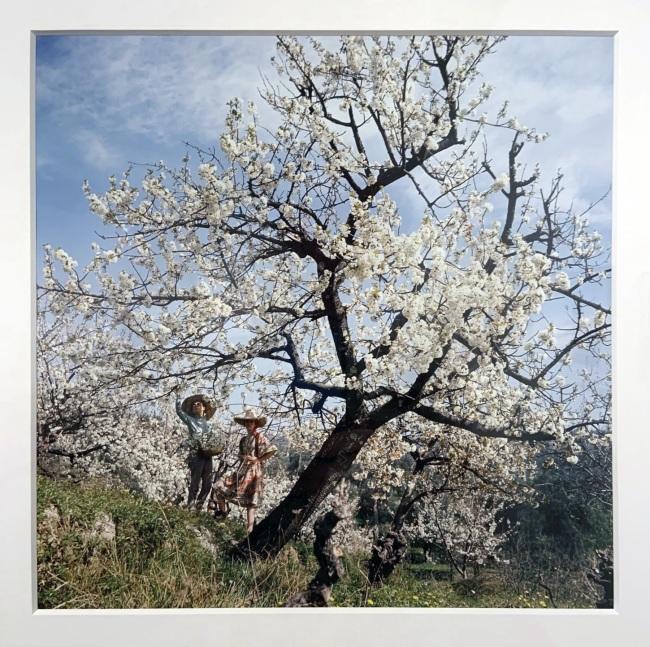 Jacques Henri Lartigue (1894-1986) 'Florette and Stéphanie' Opio, France, Spring 1964 (installation view)
