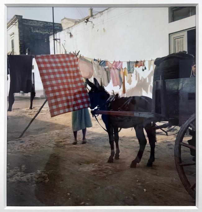Jacques Henri Lartigue (1894-1986) 'Manfredonia, Italy, February 1958' (installation view)